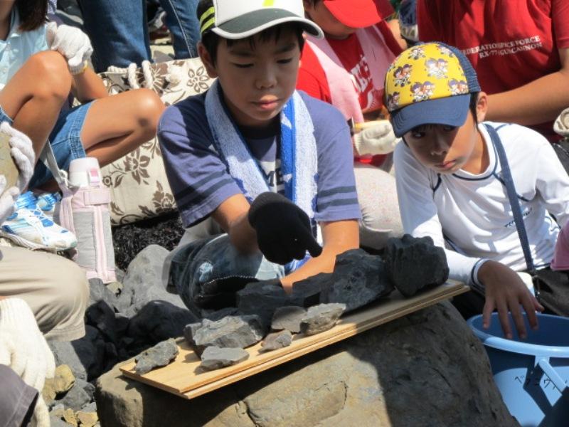真剣に化石を観察する参加者