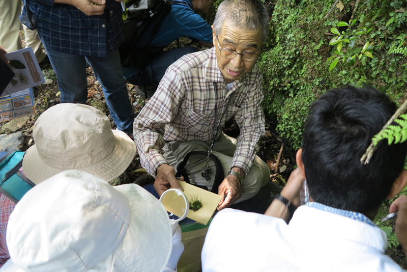 山田耕作先生